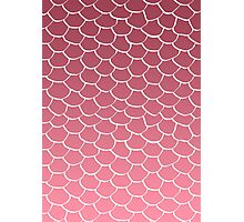 Salmon Scales Photographic Print