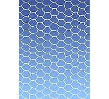 Blue Scales Photographic Print