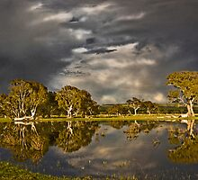 Storm over Mt MacIntyre S.A. by Baldric