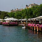Lake Garda - Torri Del Benaco by imagic