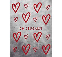 Cougars Photographic Print