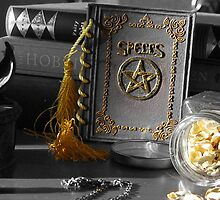 Spell Book by Katie Lou