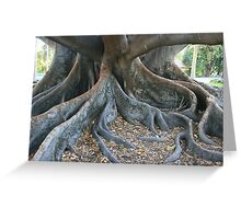 My Enormous Roots Greeting Card