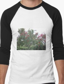 bottle brush tree Men's Baseball ¾ T-Shirt