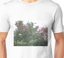 bottle brush tree Unisex T-Shirt