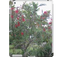 bottle brush tree iPad Case/Skin