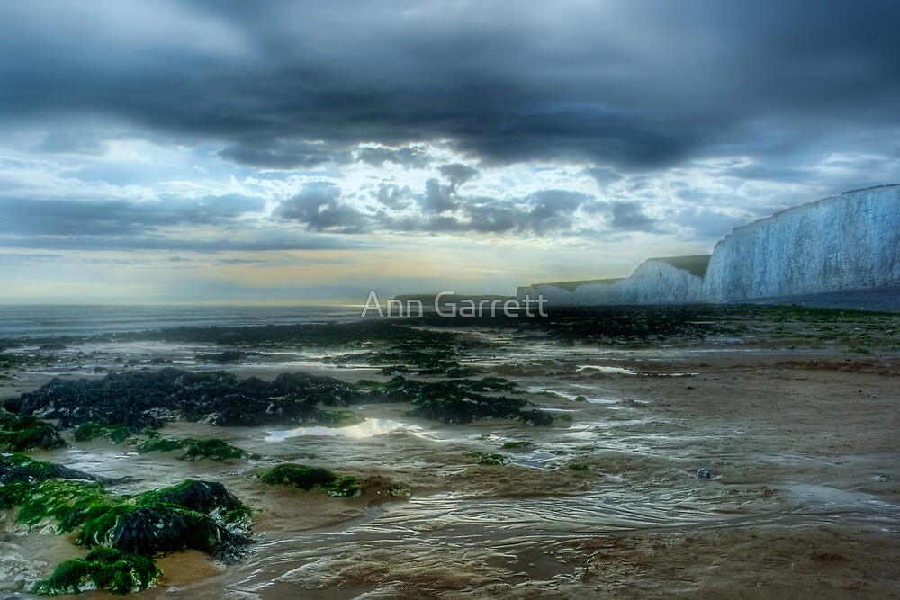 Storm Brewing by Ann Garrett