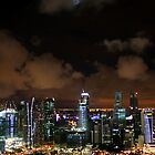 Moonlit Singapore by Vivek Bakshi