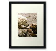 Between Friends Framed Print