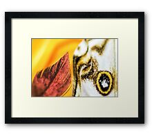 Sweetness and Passion Framed Print