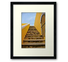 Going Up for a View Framed Print