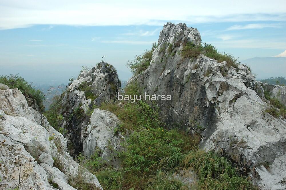 karst mountain by bayu harsa