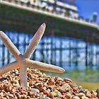 Summer in Brighton, England by Giovanna Tucker