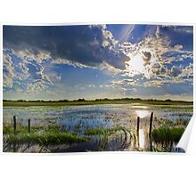 Flooded Field In Alberta Poster