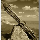 Old wood by Russ  Shepherd