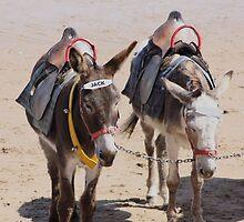 Jack & Eeyore by Craig Bradley