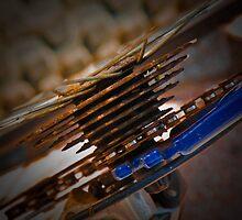 Freewheel by Peter Maeck