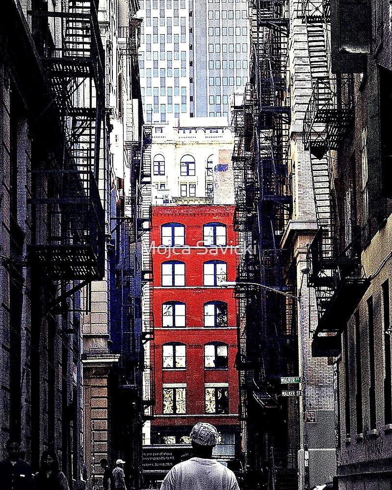 Manhattan Ground Perspective by Mojca Savicki