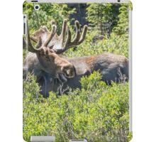 Smiling Bull Moose iPad Case/Skin