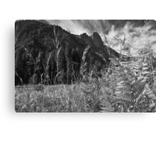 Meadow View Canvas Print