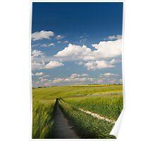Wheat Field in Summer Light Poster
