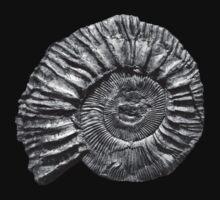 Ammonite Kids Clothes