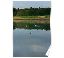 a pond reflection in rhode island Poster