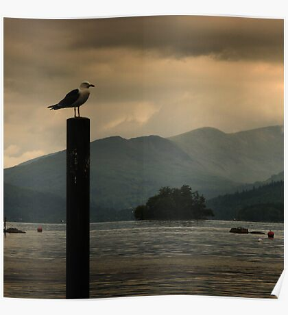 Keeping an eye on Windermere Poster