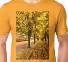 Boston, fall mood T-Shirt