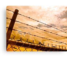 Fenced Beauty Canvas Print