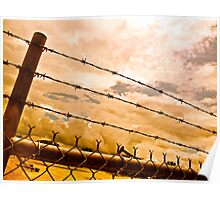 Fenced Beauty Poster