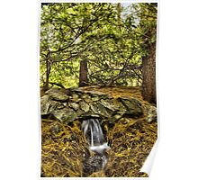 Little water fall Poster