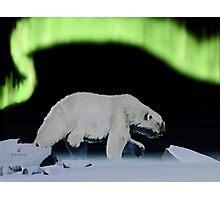 On the Ice Photographic Print