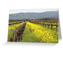 Napa Valley Grape Vineyard  Greeting Card