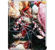 Banded Cleaner Shrimp on the Coral Reef iPad Case/Skin