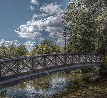 Bridge over the River Coy by InterestingImag