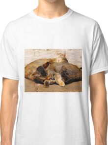 Twin Kittens Classic T-Shirt