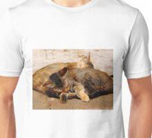 Twin Kittens Unisex T-Shirt