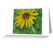 Hitting the Green Ceiling Greeting Card
