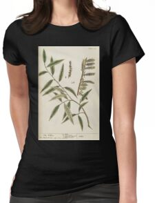 A curious herbal Elisabeth Blackwell John Norse Samuel Harding 1739 0194 The Willow Tree Womens Fitted T-Shirt