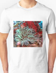 Giant Green Sea Anemone feeding near Red Coral Reef Wall T-Shirt