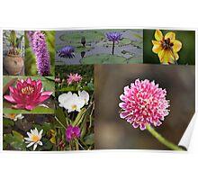 Biltmore Estate Gardens Collage Poster