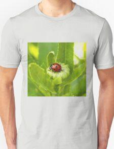 Macro Ladybug on Garden Plant Unisex T-Shirt