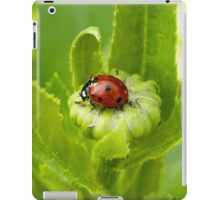 Macro Ladybug on Garden Plant iPad Case/Skin