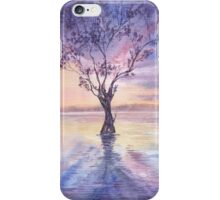 Colorful sunset  iPhone Case/Skin
