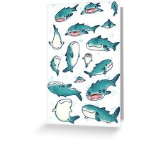whale sharks! Greeting Card