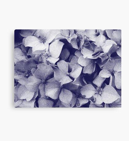 Hydrangeas in crayon  Canvas Print