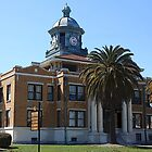Courthouse - Inverness, Florida by AuntDot