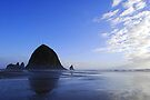 Low Tide at Haystack Rock by Tori Snow