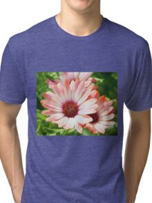 Macro Pink Cinnamon Tradwind Daisy Flower in the Garden Tri-blend T-Shirt